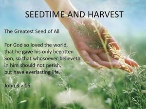 Seedtime and harvest - The greatest seed of all - for God so loved the world that He gave