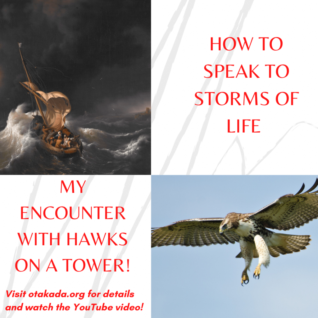 Part 24 - How to Speak to Storms of Life and Lessons from My Encounter with Hawks on a Tower!